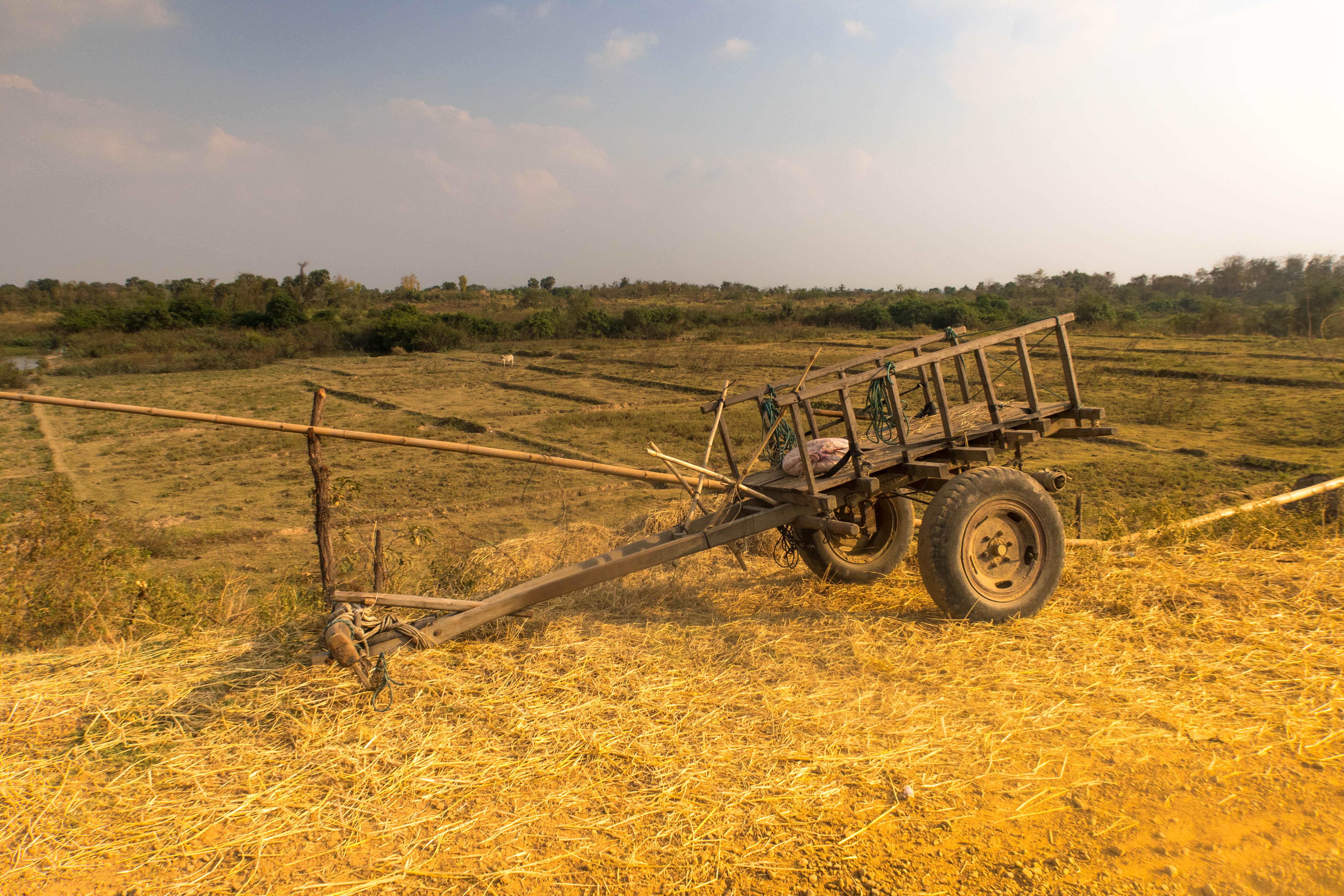 Tracteur 2 - CAMBODGE