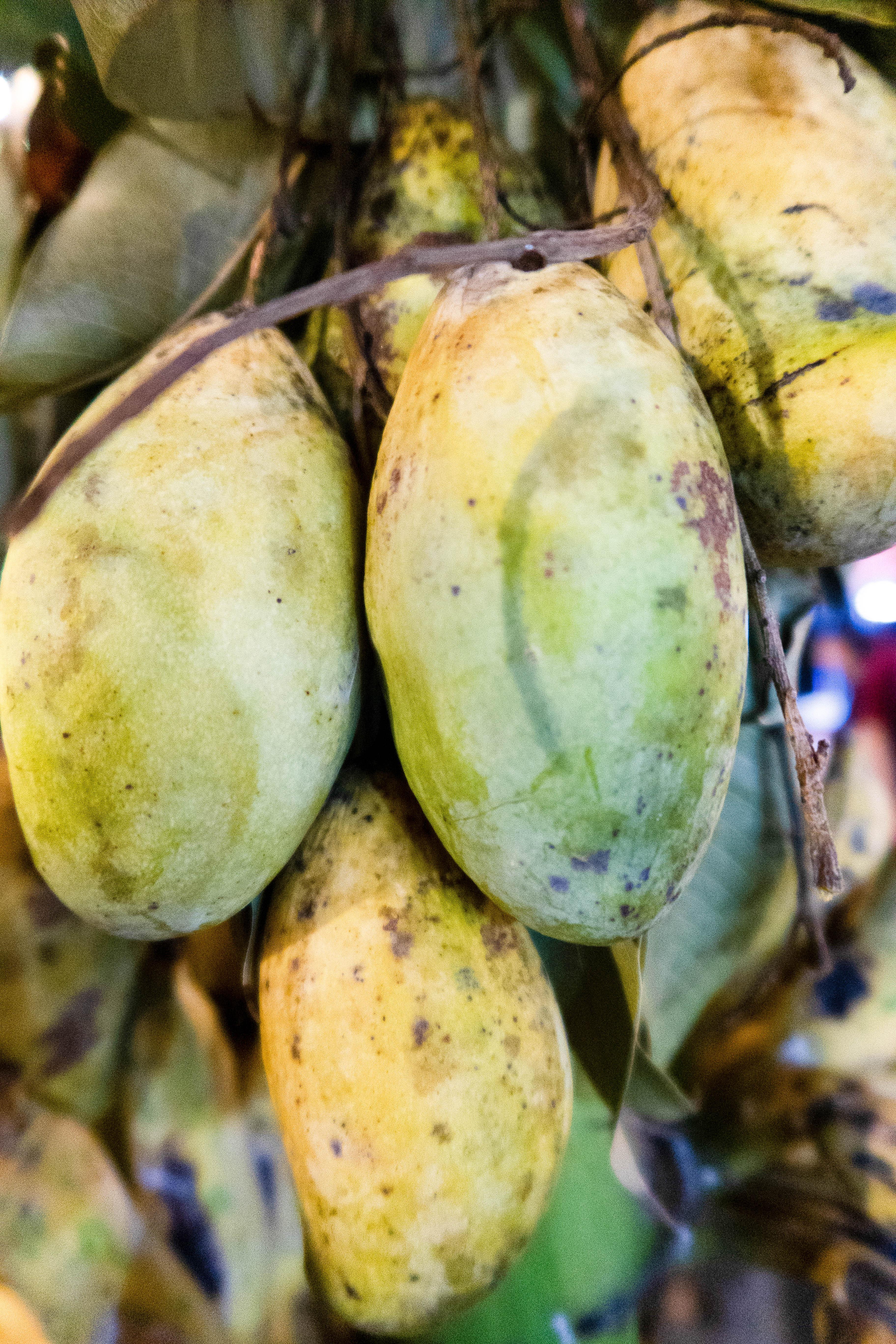 Mangues - FRUITS & LÉGUMES