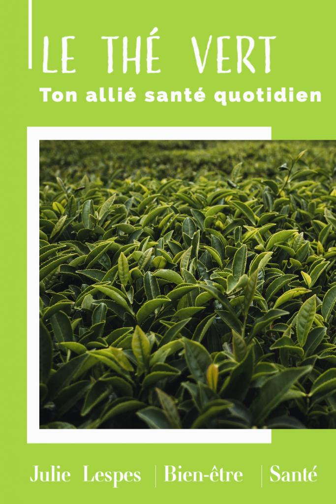 thé vert santé bienfaits 683x1024 - Le thé vert, ton allié santé simple au quotidien